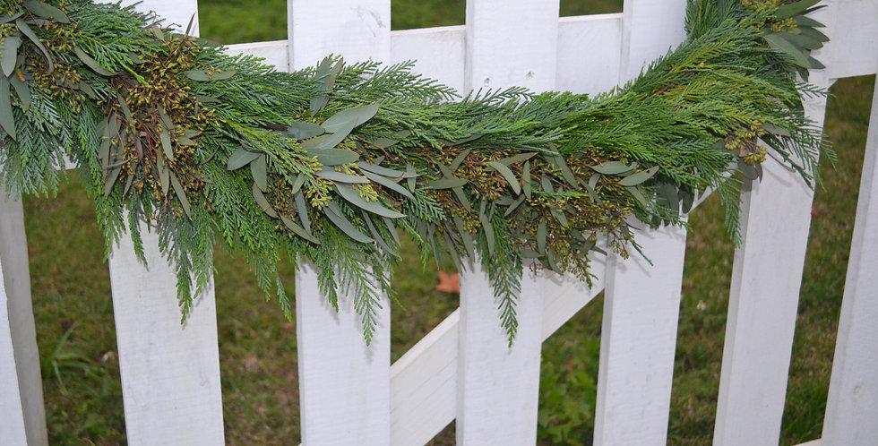 Leyland with Seeded Eucalyptus