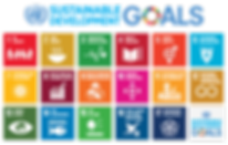 787px-Sustainable_Development_Goals.png