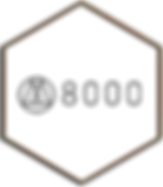 oculus_brands-w8000.png