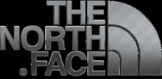 TNF-logo-brushsedsilver2.png