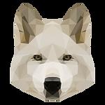 幾何白色的狗