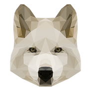 幾何学白い犬