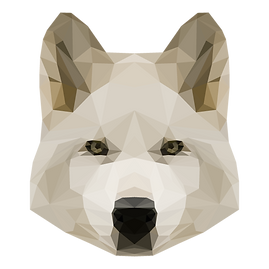 Geometric White Dog