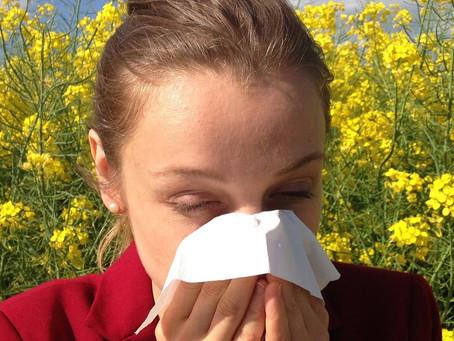 C'est le temps du pollen