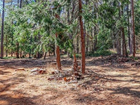 Just SOLD $50,000 10034 Greenwood Road, Grass Valley