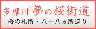 多摩川夢の桜街道バナー