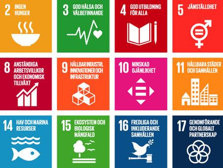 FNs Globala Hållbarhetsmål