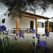 Fully House Vinbya Casa Ibiza 2020-12-21