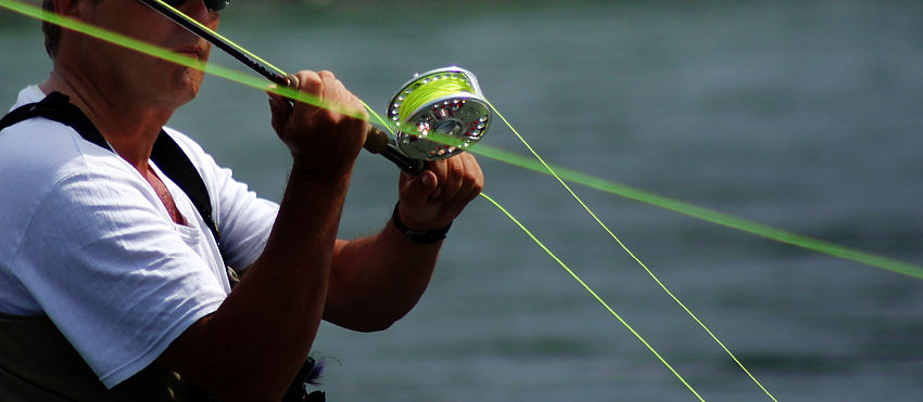 Kurs live Fischen