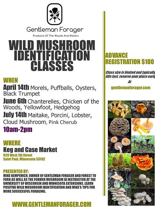 Wild Mushroom ID Class (June)