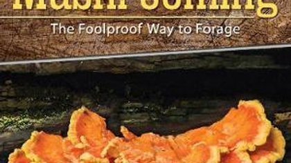 Start Mushrooming-- The Foolproof Way To Forage