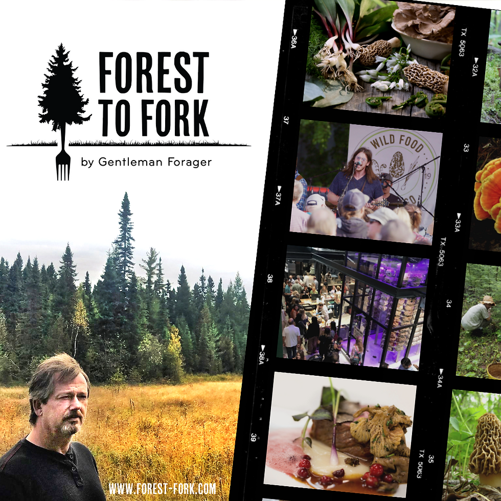 Forest to Fork