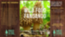 wild food fandango event cover17.png