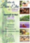 Affiche_Salon_du_bien-être_au_naturel.jp