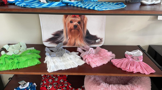 Pet Point Grooming Boutique 18