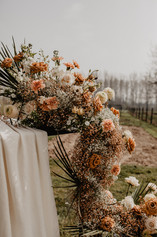 2021-04-01 Anneleen Jegers Photography -