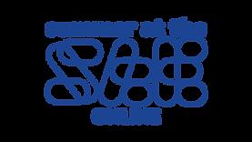 SatS_logo.Blue.png