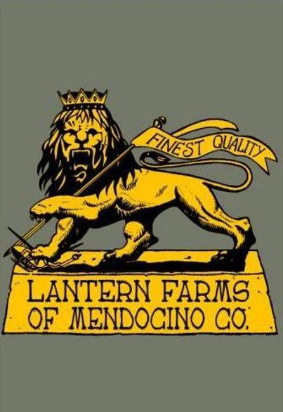 Lantern Farms Lion -Camo hoodie-003.JPG