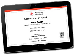 m44140095_digital-certificates-transpare