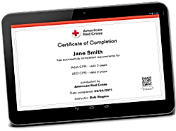 m44140095_digital-certificates-transpare