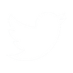Twitter Bird Icon.png