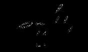 logo-ladygreen.png