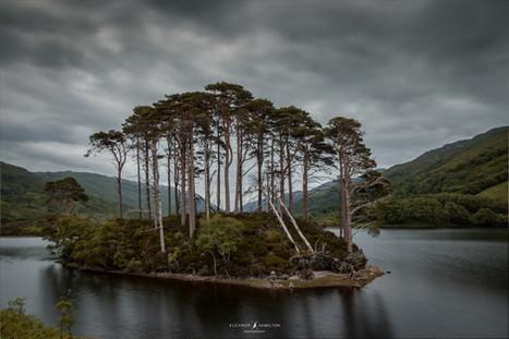 Loch Eilt, Scottish Highlands
