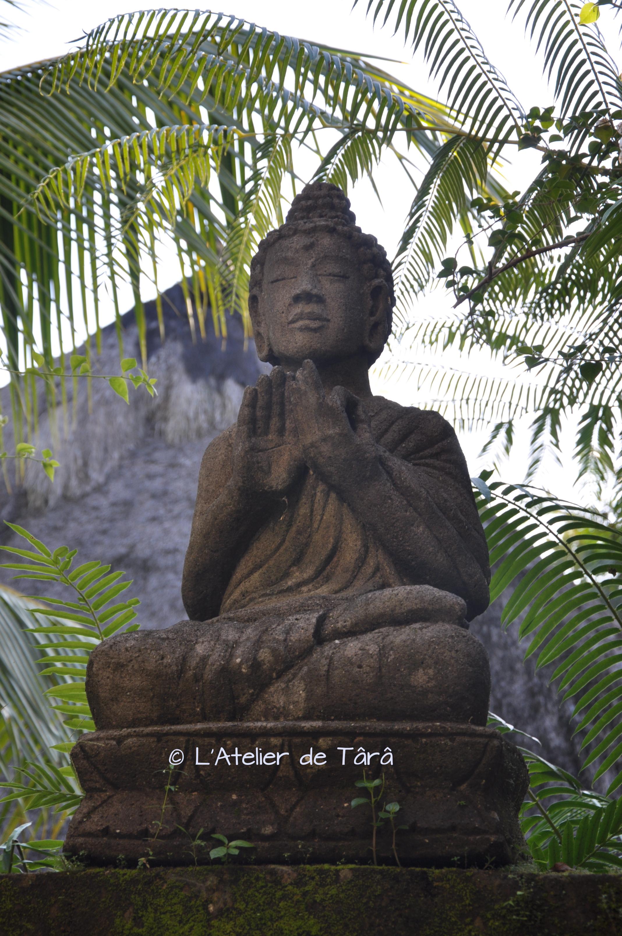 Buddha Bali