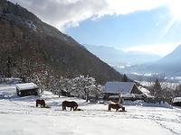 Gite du Mont Bogon gite d'hiver