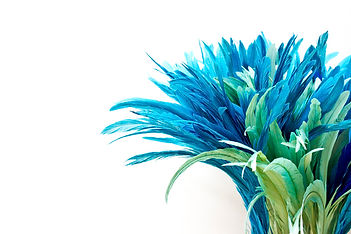 Lux Feathers