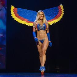 Lux Bird of Paradise theme wear