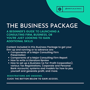 The Business Package.png