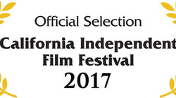 Mothers in the Middle is going to FLIXX Fest and California Independent Film Festival!