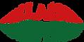 llais newydd logo.png