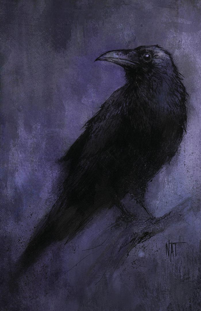 Crow_Skull_Print.jpg