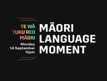 Māori Language Moment: we were part of the Million!