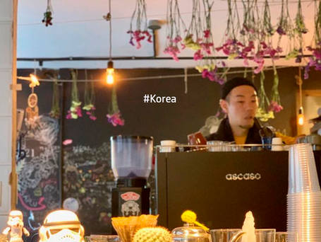 Barista T in Korea.jpg