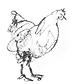 chicken2.png