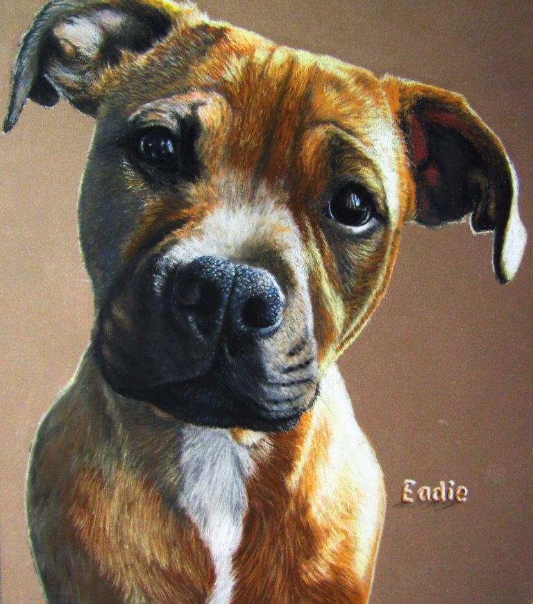 'Eadie' pet portrait commisson