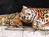 Amur Leopard and Cub - Mixed-Media.jpg