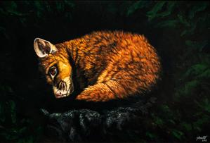 Brushtail Possum.png