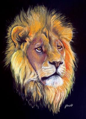 Lion portrait.png