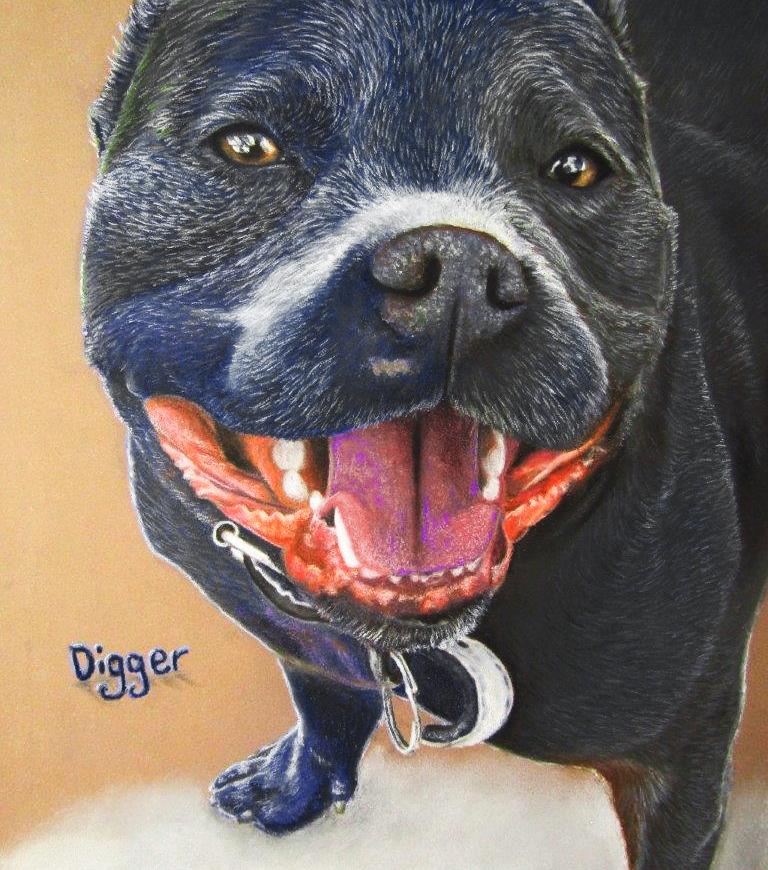 'Digger' pet portrait commission