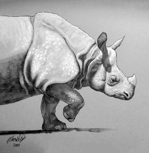 Indian Rhino.png