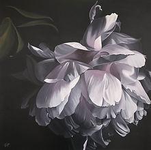 Patricia Hillard