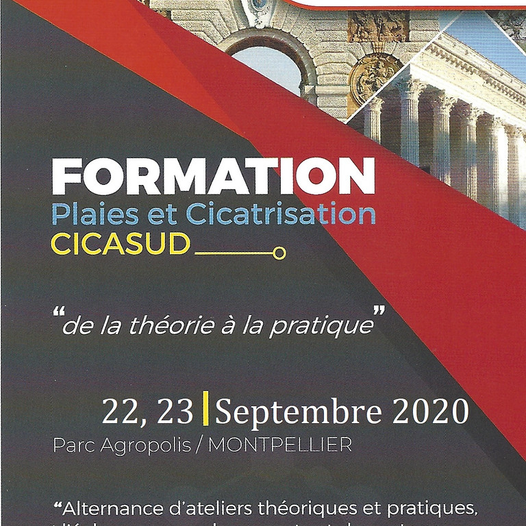 CicaSud 2020