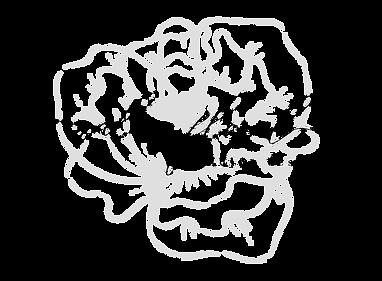 nalias floral.png