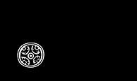 logo-RGS-transparente.png