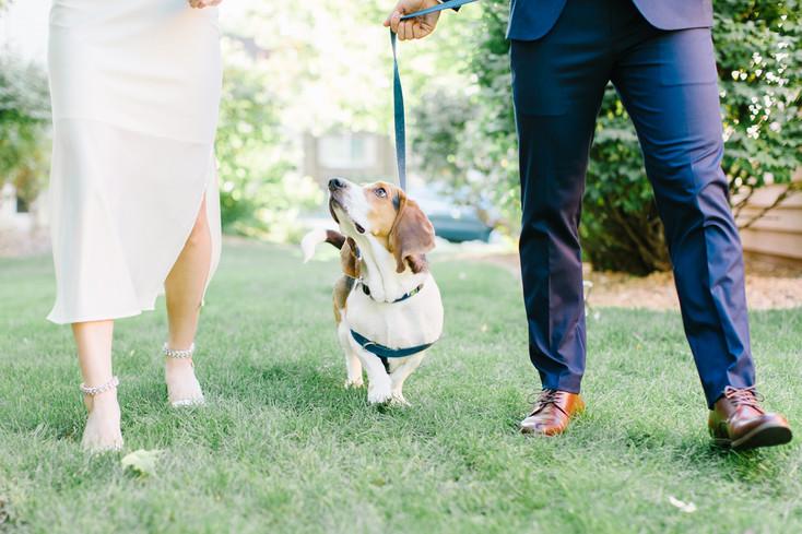 Alm Mini wedding