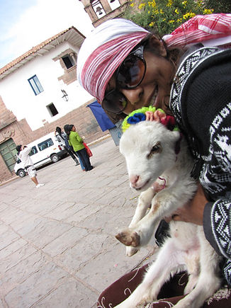In Peru with Montreal Massage Therapy, MontrealMT.com with Peruvian Llamas, Waterbirthing in Montreal after Peru birth centers, Baby Massage also to baby llama, Lomi Lomi Montreal, Corporate Massage, Event Massage, Massage for Oncology, Verdun Massage Therapist, Ste. Anne de bellevue Massage Therapist, Prenatal Massage Therapist, Indian Head Massage